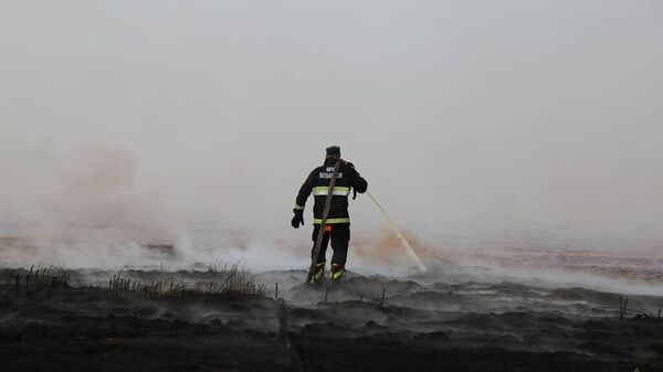 Тушение торфяного пожара в Петриковском районе - Sputnik Беларусь