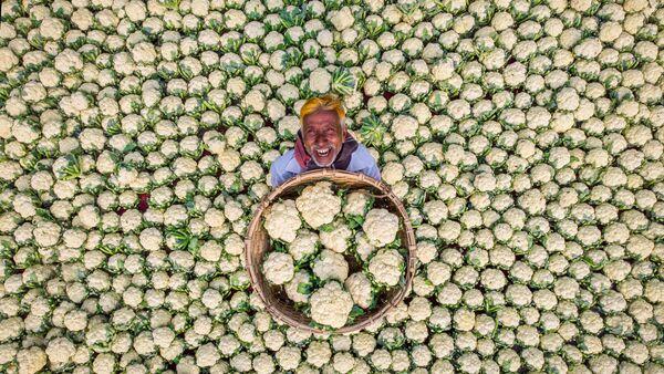 Счастливый фермер - Sputnik Беларусь