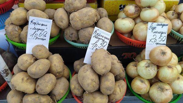 Картофель на Комаровке - Sputnik Беларусь