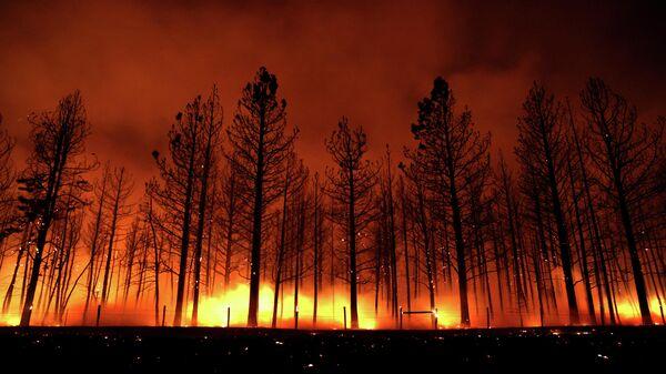 Пожар Дикси в Калифорнии - Sputnik Беларусь