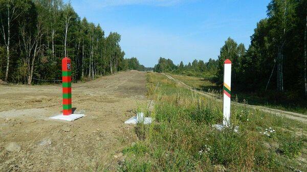 Литовский народ это одно, а правящая элита - совсем другое - Sputnik Беларусь