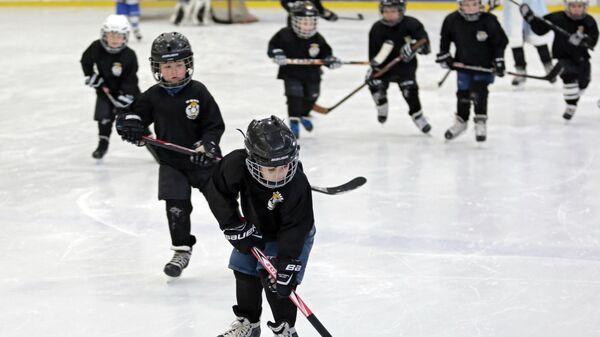 Дети играют в хоккей - Sputnik Беларусь