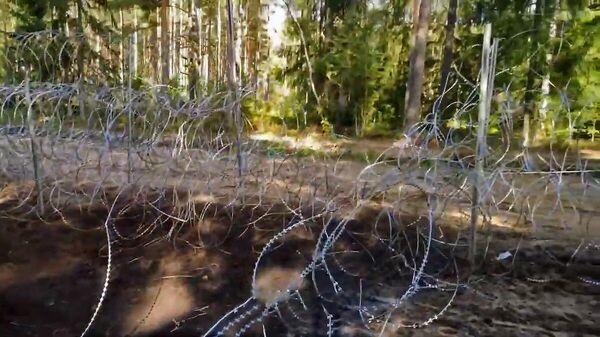 Не для слабонервных: жертвы забора на белорусско-литовской границе  - Sputnik Беларусь