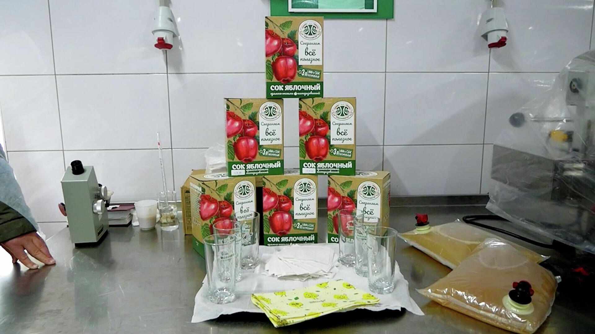 В сок не добавляют ни воду, ни сахар - Sputnik Беларусь, 1920, 08.09.2021