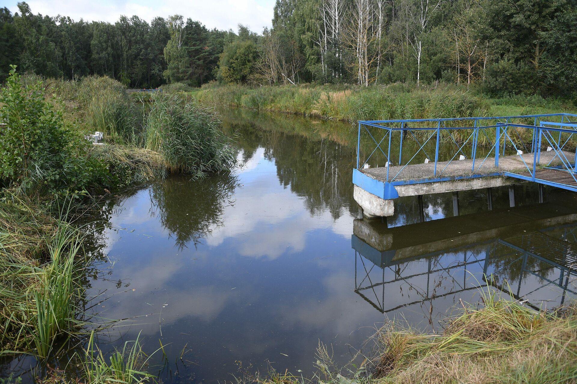 Естественный водоем здесь ниже искусственных, приходится каждый месяц делать перекачку воды - Sputnik Беларусь, 1920, 08.09.2021