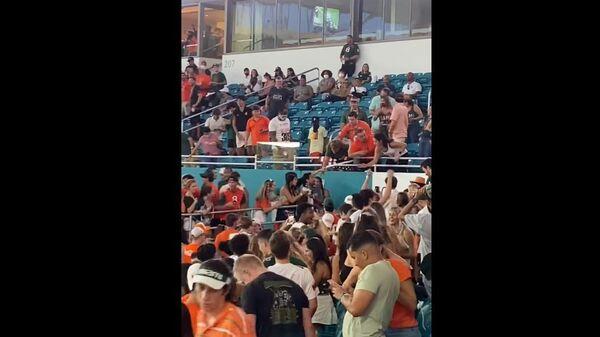 Футбольные фанаты спасли в Майами сорвавшегося с трибуны кота - Sputnik Беларусь