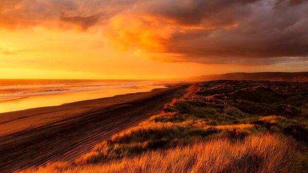 Новая Зеландия, архивное фото - Sputnik Беларусь