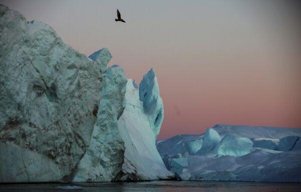Ежегодно около 35 миллиардов тонн айсбергов откалываются и выходят из фьорда. - Sputnik Беларусь