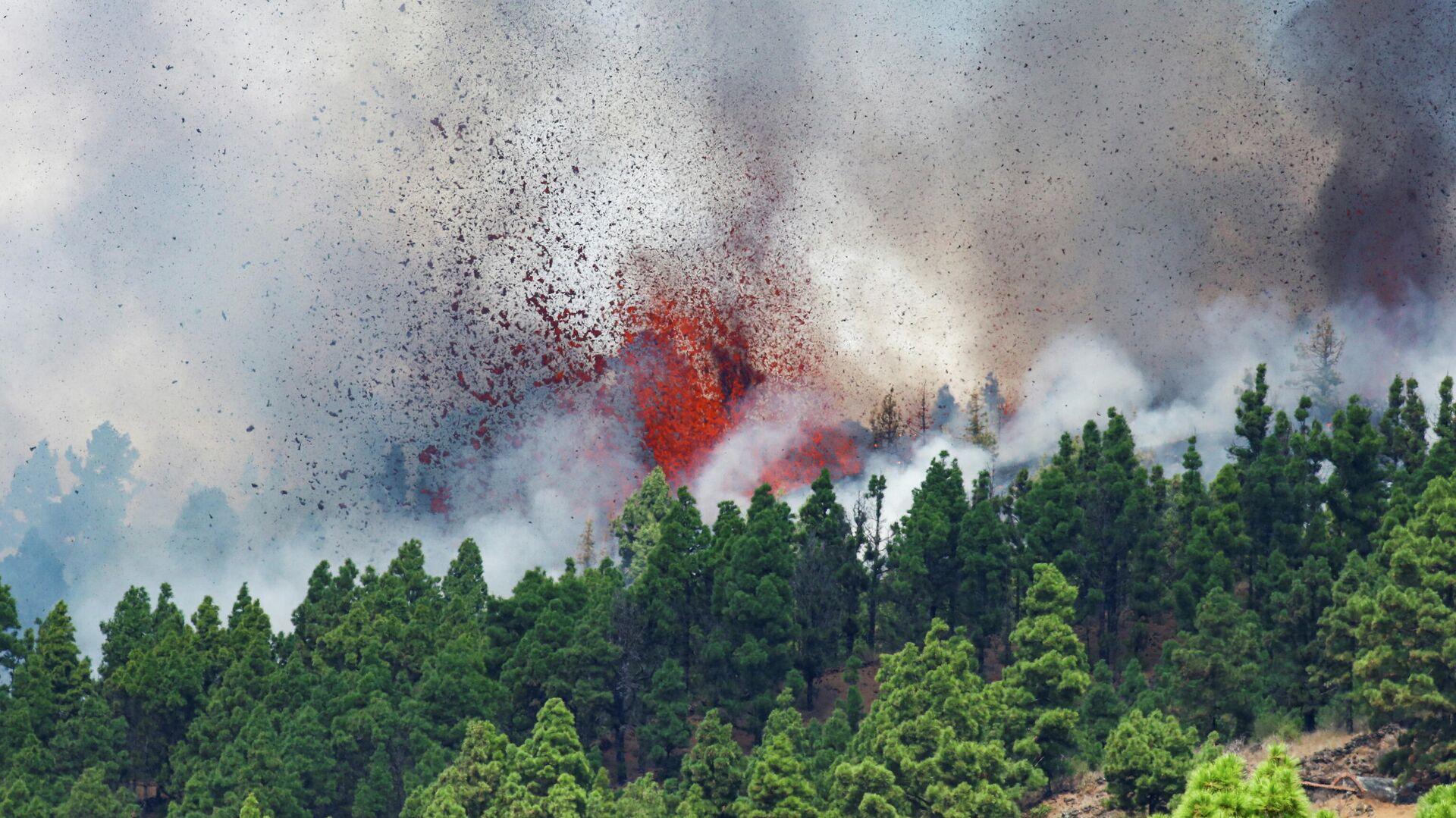 Лава и дым поднимаются после извержения вулкана в национальном парке Кумбре Вьеха в Эль-Пасо, на Канарском острове Ла-Пальма - Sputnik Беларусь, 1920, 19.09.2021