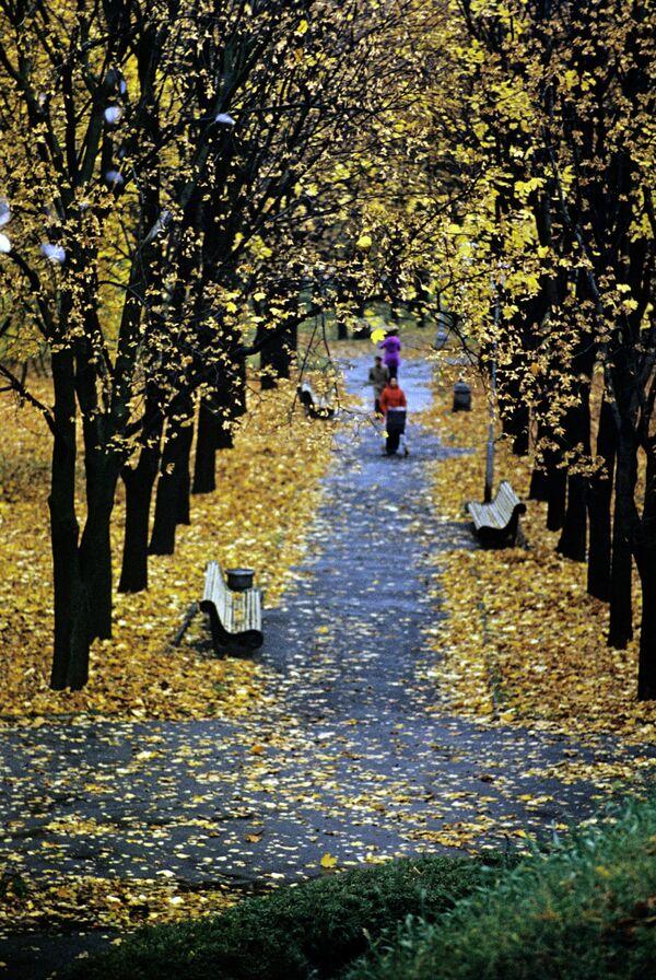 У адным з паркаў Мінска восенню, 1978 год. - Sputnik Беларусь