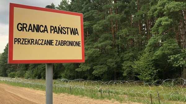 Сергей Пантелеев: на границах Беларуси возникает давно знакомая схема - Sputnik Беларусь