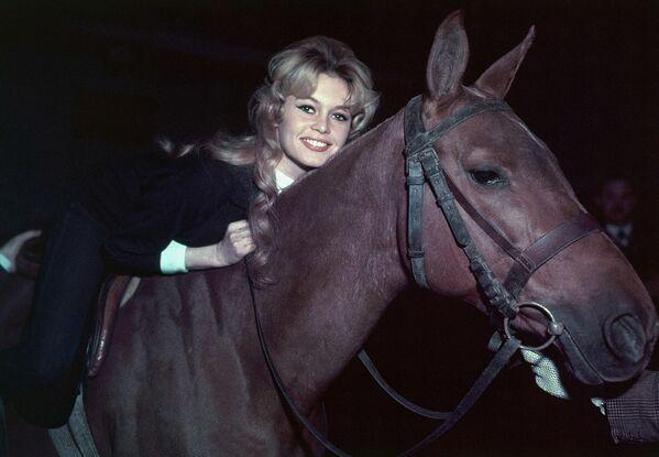 Актриса Брижит Бардо со своей любимой лошадью тренируется в парижской школе верховой езды для съемок своего следующего фильма в Испании. 1958 год. - Sputnik Беларусь