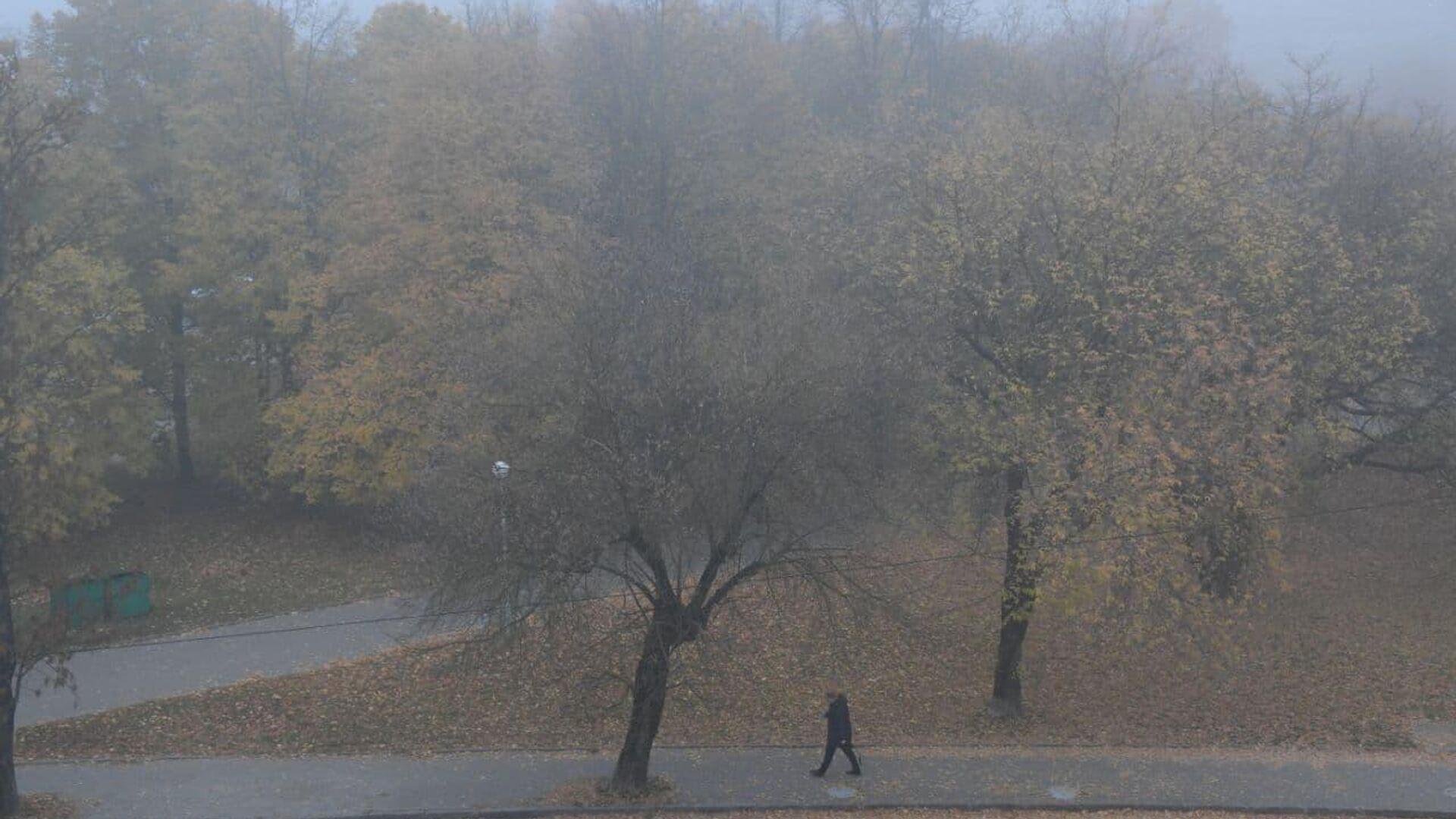 Туман в Минске - Sputnik Беларусь, 1920, 13.10.2021
