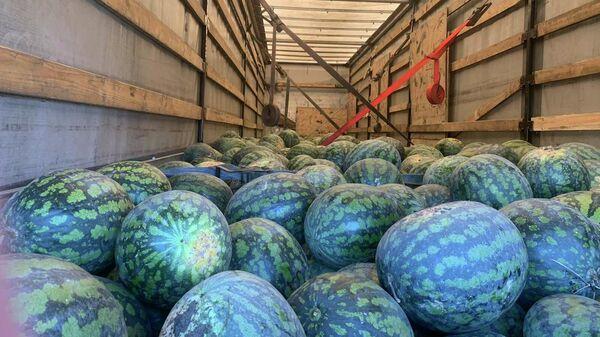 11 тонн арбузов не доехали из России в Беларусь - Sputnik Беларусь