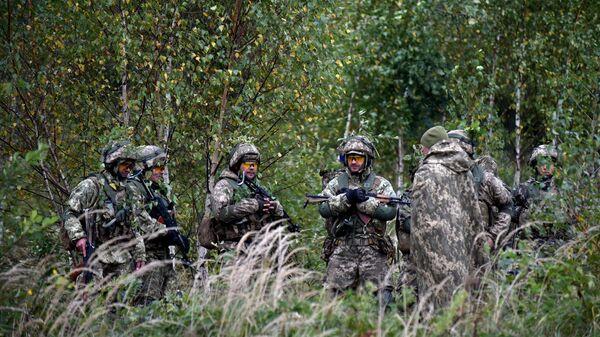 Есть угроза провокаций: что будет делать НАТО у границ Союзного государства? - Sputnik Беларусь