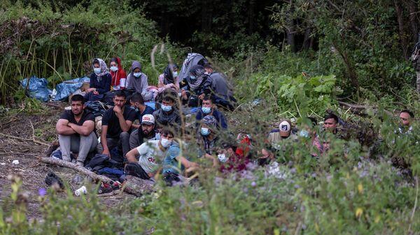 Блогер шокирован историей мигранта, найденного без сознания на границе - Sputnik Беларусь