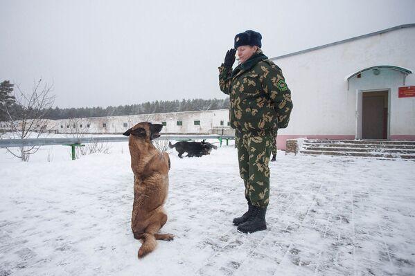 Кинологический центр в Сморгони - Sputnik Беларусь
