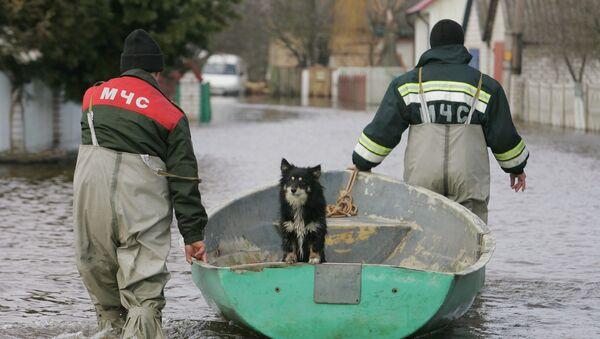 Подтопление домов в Минской области в результате подъема уровня воды на реке Неман - Sputnik Беларусь