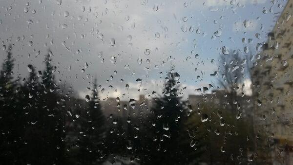 Дождж у Мінску - Sputnik Беларусь