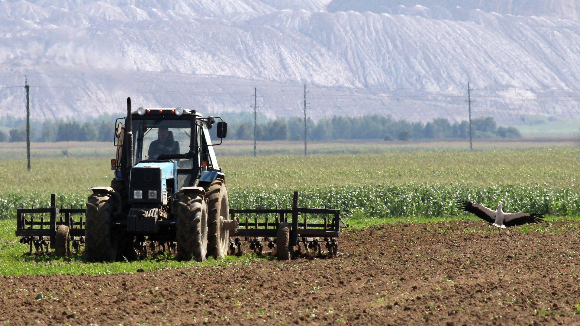 Трактор перепахивает почву на поле возле отвалов отработанной породы из шахт Беларуськалия под Солигорском  - Sputnik Беларусь, 1920, 06.10.2021