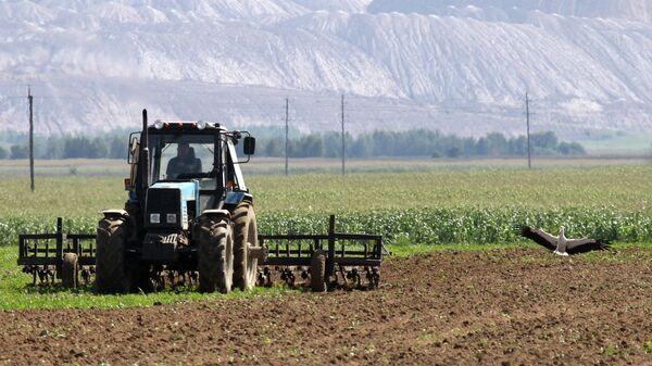 Трактор перепахивает почву на поле возле отвалов отработанной породы из шахт Беларуськалия под Солигорском  - Sputnik Беларусь