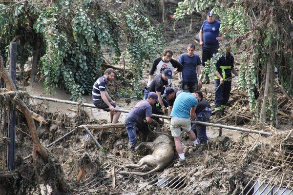 Устранение последствий наводнения в Тбилиси - Sputnik Беларусь