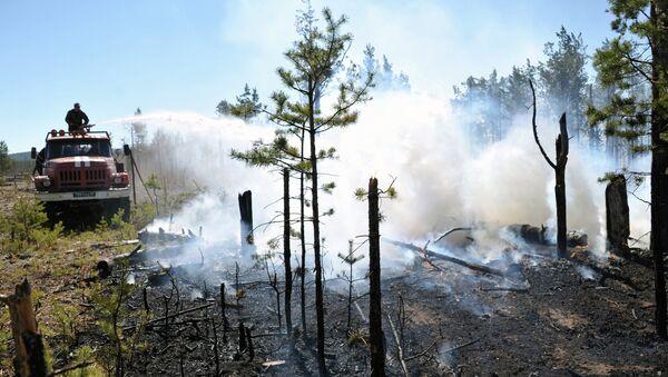 Борьба с лесными пожарами - Sputnik Беларусь