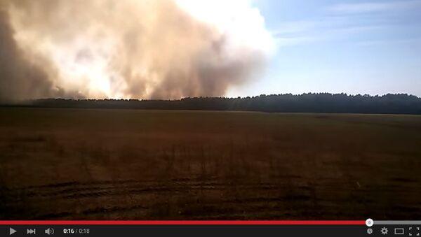 Пожар в Лельчицком районе - Sputnik Беларусь
