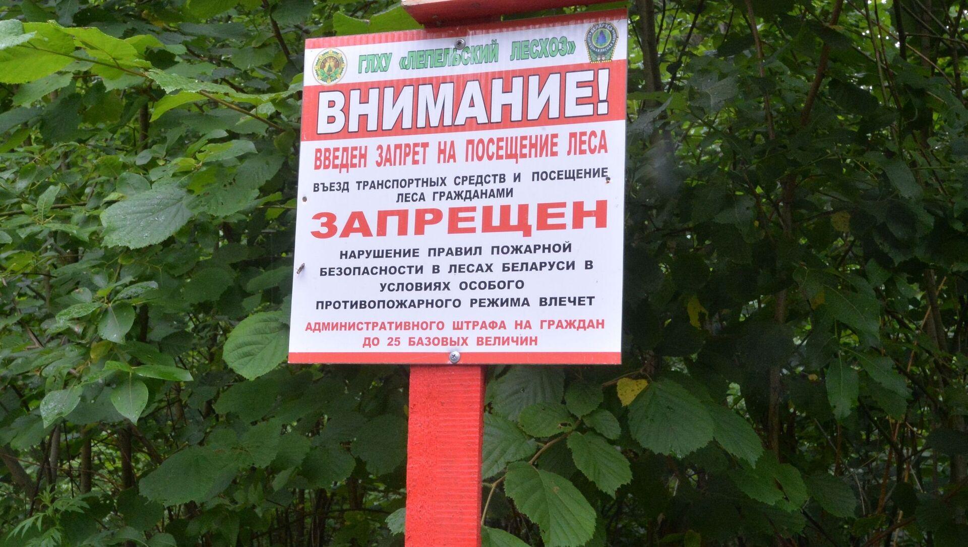 Табличка на въезде в лес - Sputnik Беларусь, 1920, 08.06.2021