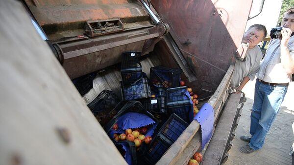 Бульдозером по продуктам: тонны еды уничтожили на границе с Россией - Sputnik Беларусь