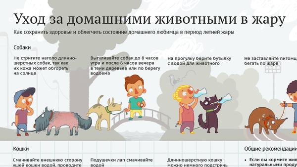 Уход за домашними животными в жару - Sputnik Беларусь