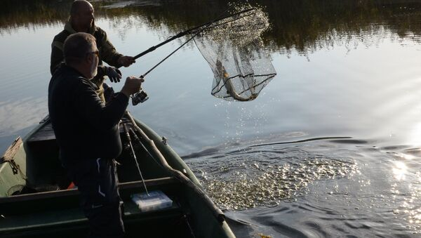 Асенняя рыбалка - Sputnik Беларусь
