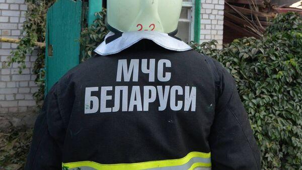 МЧС Беларуси - Sputnik Беларусь