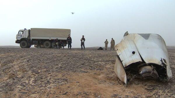 Спутник_Спасатели МЧС РФ запустили дрон для поиска тел жертв катастрофы Airbus A321 - Sputnik Беларусь