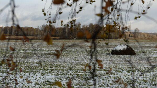 Мокры снег. Восень - Sputnik Беларусь