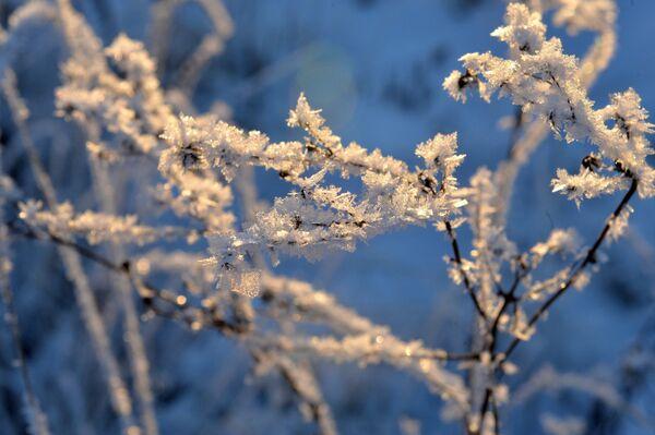 Зимний день - Sputnik Беларусь