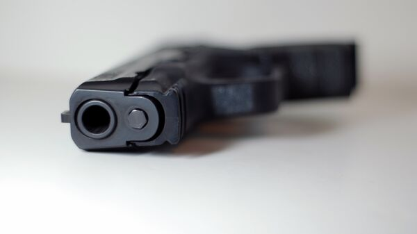 Пневматический пистолет  - Sputnik Беларусь