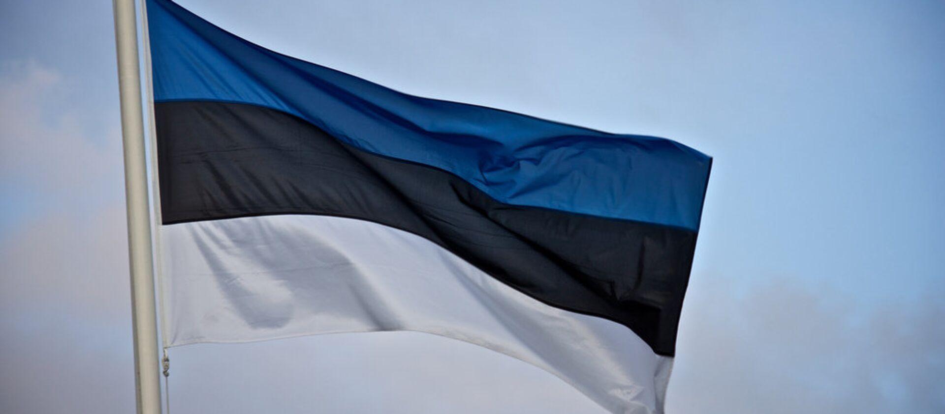Сцяг Эстоніі - Sputnik Беларусь, 1920, 07.04.2021