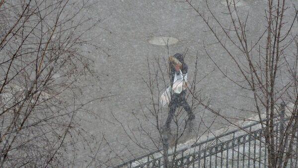Снегопад в Минске - Sputnik Беларусь