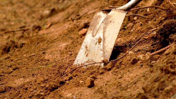 Лопата в земле, архивное фото - Sputnik Беларусь