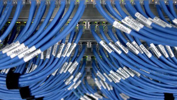 Сетевые кабели и свич - Sputnik Беларусь