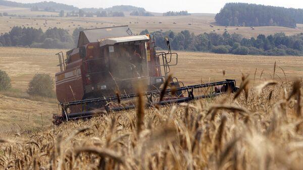 Уборка урожая зерновых, архивное фото - Sputnik Беларусь