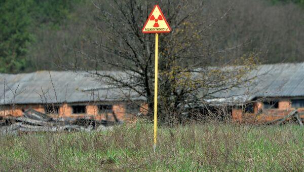 Белорусский сектор зоны отчуждения Чернобыльской АЭС - Sputnik Беларусь