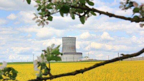 Белорусская АЭС в мае - Sputnik Беларусь