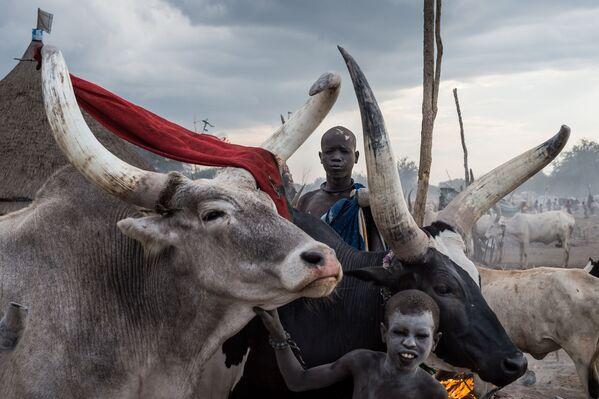Южный Судан: от войны к жизни - Sputnik Беларусь