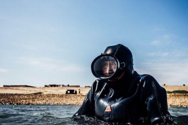 Сборщики водорослей - Sputnik Беларусь