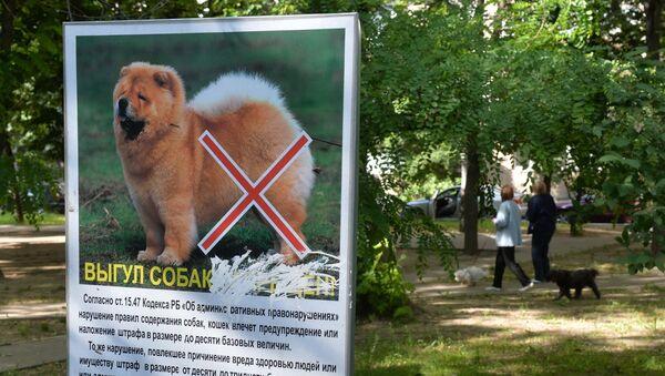 Таблички о запрете выгула собак в минских дворах - Sputnik Беларусь