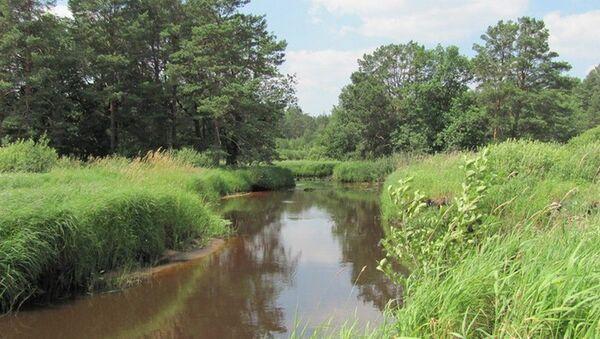 Река Ствига - место гибели подростков в Лельчицком районе - Sputnik Беларусь