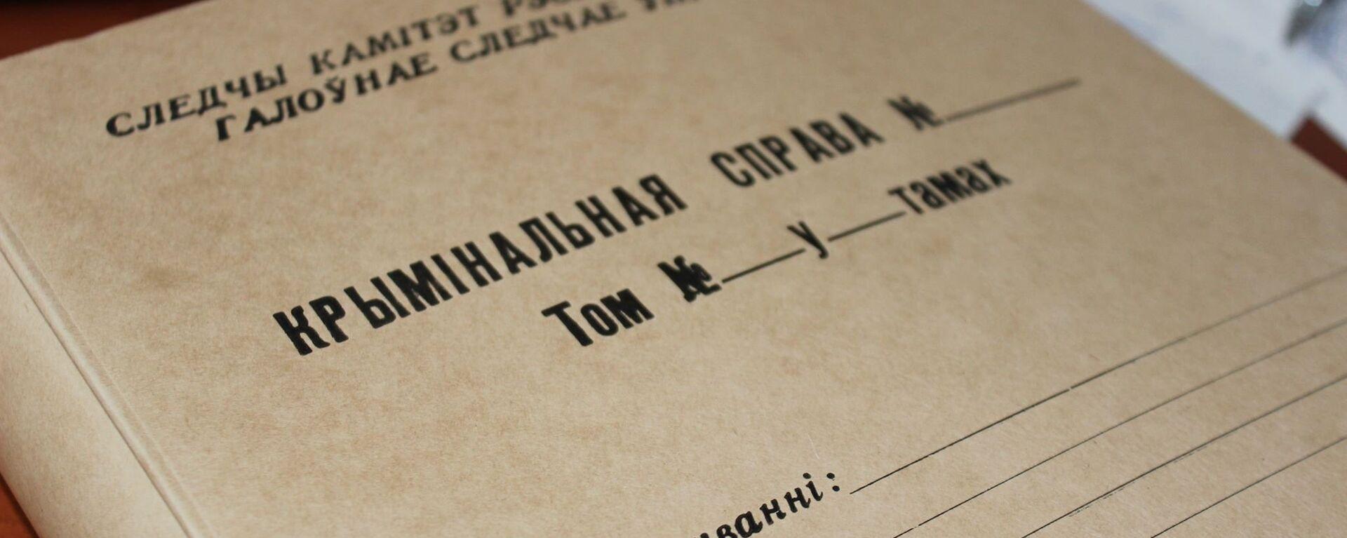 Папка для материалов уголовного дела - Sputnik Беларусь, 1920, 04.11.2020