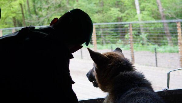 Пограничник со служебной собакой - Sputnik Беларусь
